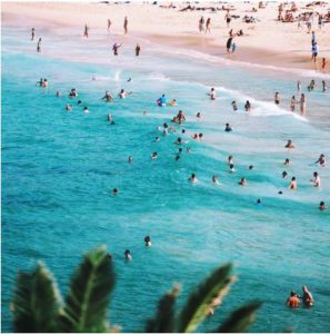 Miami Beaches and Copier Services